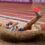 Rekordår för BAUHAUS-galan – nu väntar en spännande OS-säsong
